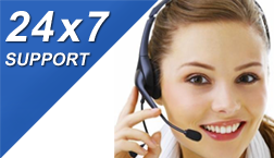 Prism Software 24 x 7 support